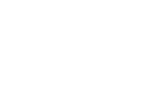 Evolve - The Campaign for York College